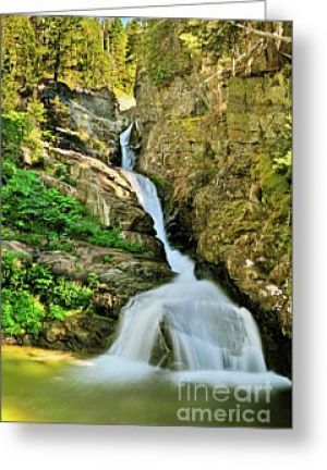 Aster Falls Greeting Card