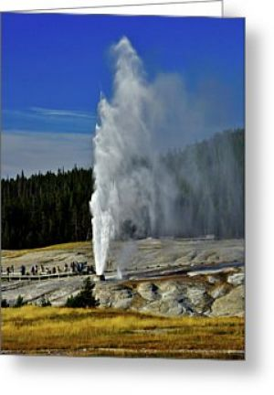 Beehive Geyser Greeting Card