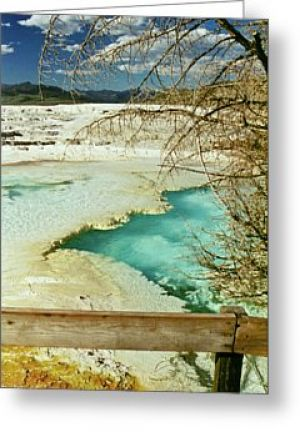 Yellowstone Hot Spring Greeting Card