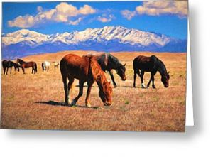 Horses on the Plain Greeting Card