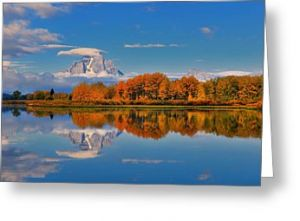 Autumn Foliage at Oxbow Bend Greeting Card