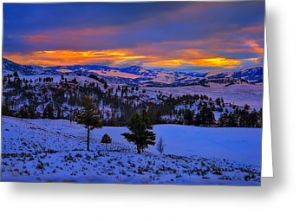 Yellowstone Winter Morning Greeting Card